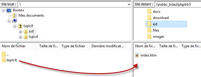 transfira os arquivos para a raiz do ftp